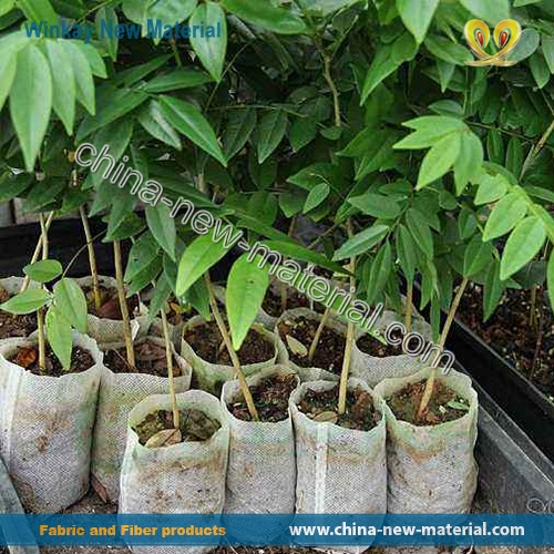 Plant Grow Bags