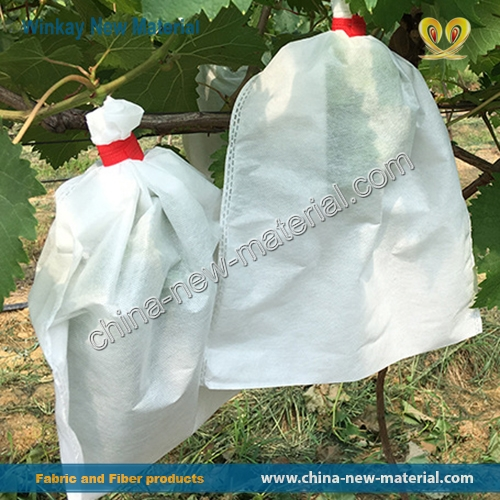 Fruit Protection Bags for Trees